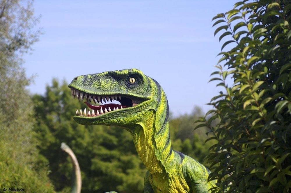 planet exotica-parc zoologique charente Maritime